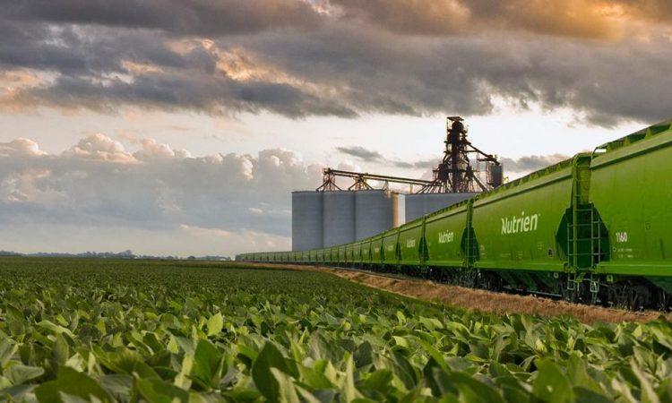 Nutrien pretende triplicar os empréstimos para agricultores