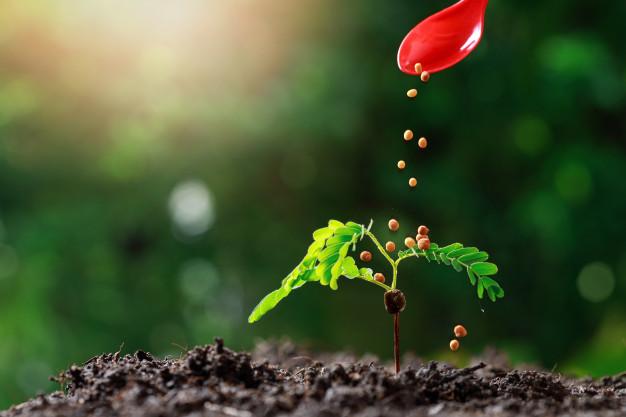 Projeto visa a redução da dependência externa de fertilizantes no Brasil