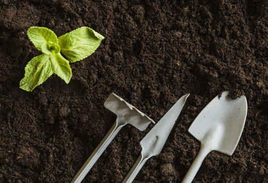 Aprosoja conclui estudo a respeito da qualidade dos fertilizantes no MS