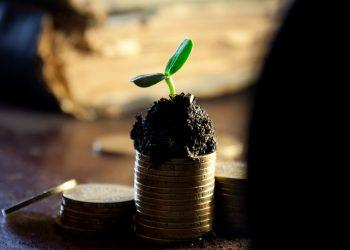 Preços de fertilizantes podem ficar sob controle na Rússia.
